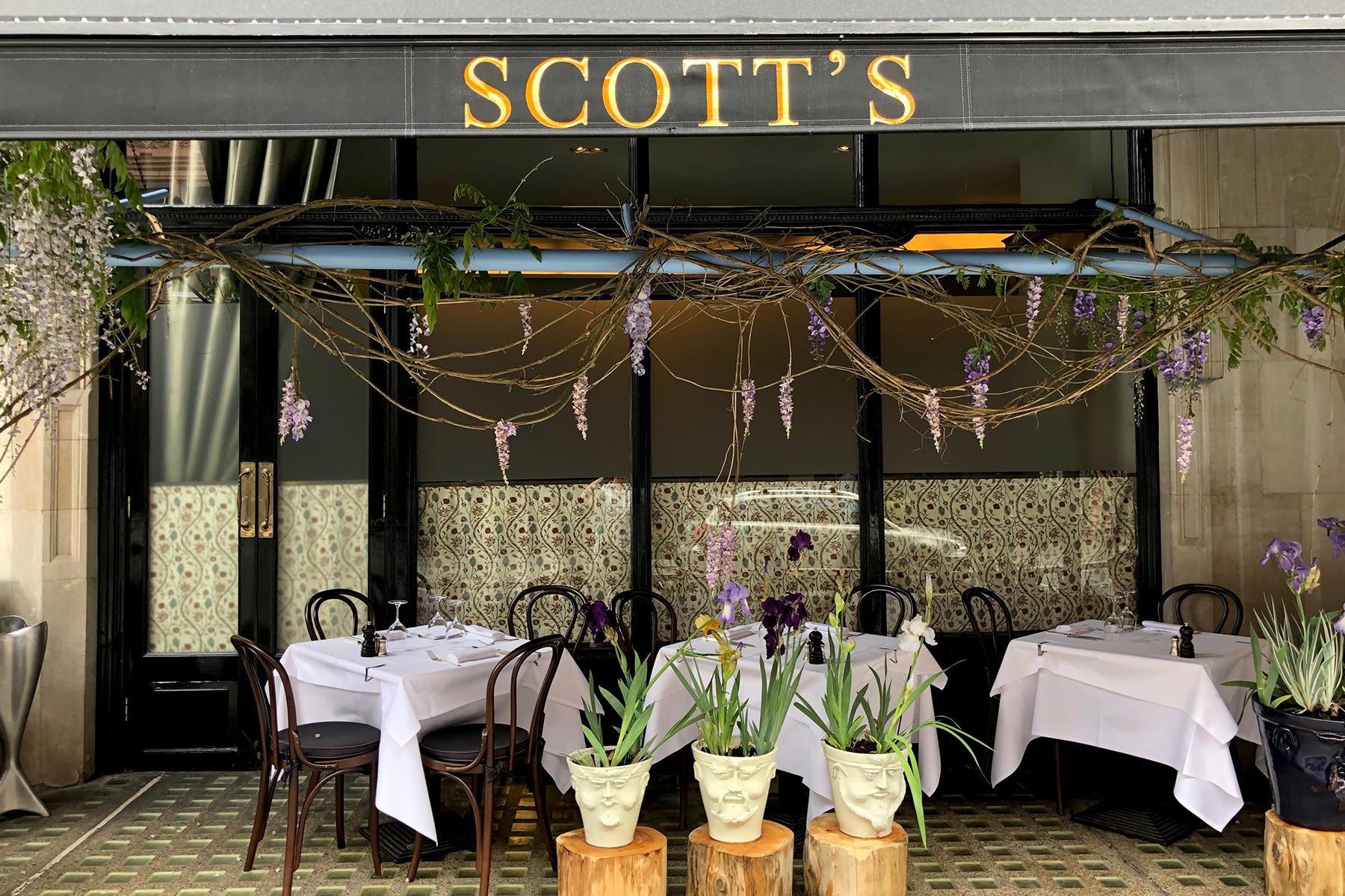 Scotts-inset-8
